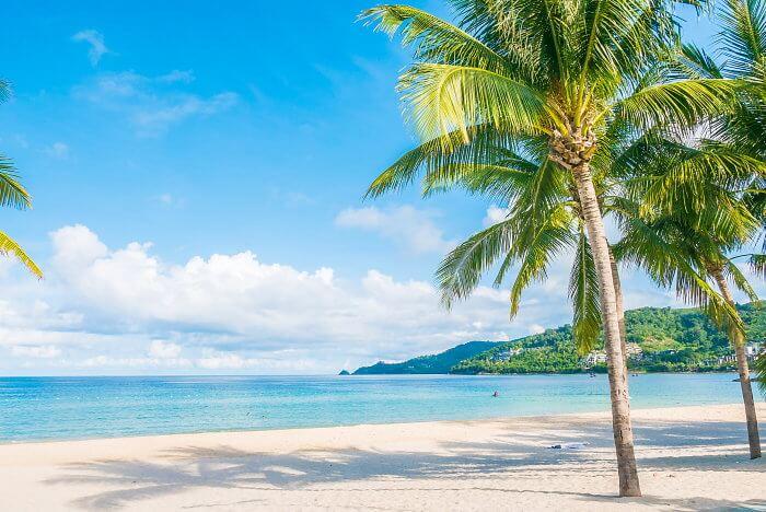 夏のトロピカルビーチ